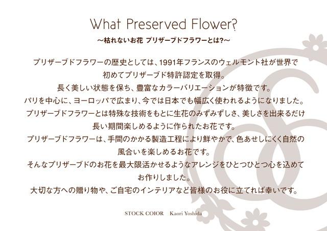 What Preserved Flower? ~枯れないお花 プリザーブドフラワーとは?~